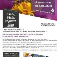 Journée d'immersion en apiculture - LAGORD