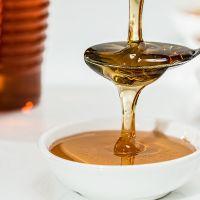 Découverte de l'apiculture - Récolte et extraction de miel - LAGORD