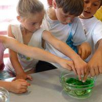 Expériences scientifiques sur le Littoral à la Cité de l'huître - MARENNES