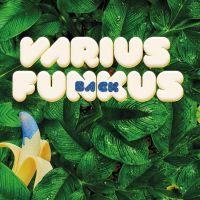 Concert de varius funkus - MARENNES